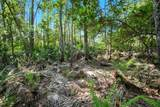 Riverwoods Trail - Photo 3