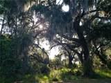 1640 Canopy Oaks Court - Photo 2