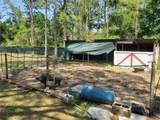 3542 Evelyn Road - Photo 4
