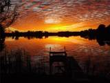 27849 Lake Jem Road - Photo 47