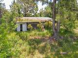 3125 Hickory Tree Road - Photo 12