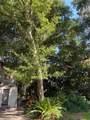 1004 Oak Lane - Photo 41