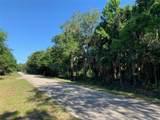 1350 Palm Way - Photo 1