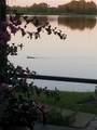 4558 Lake Orlando Parkway - Photo 47