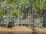 125 Dusk Meadow Trail - Photo 6