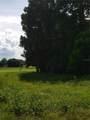 3601 Hidden River Lane - Photo 6