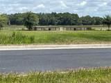 Bonsmara Drive - Photo 2