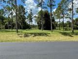Bonsmara Drive - Photo 3