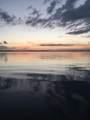2305 Lakeshore Drive - Photo 51