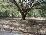 489 Sequoia Drive - Photo 12