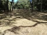 489 Sequoia Drive - Photo 14