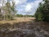 LOT 1 Magnolia Drive Lane - Photo 2