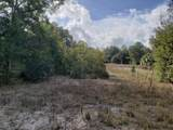 LOT 1 Magnolia Drive Lane - Photo 3