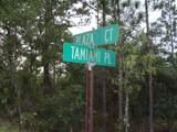 00 Tamiami Place - Photo 4