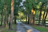 156 Juniper Trail - Photo 2