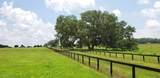 141ac Gainesville Rd (Aka Hwy 25A) - Photo 15