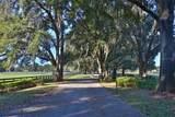 10320 Magnolia Avenue - Photo 6