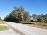 10ac Hwy 315 Highway - Photo 16