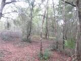 0 Magnolia Dr. - Photo 3