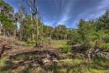 14555 Black Creek Drive - Photo 7