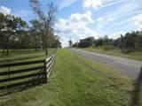 10225 Ranch Hand Avenue - Photo 4