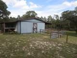 10225 Ranch Hand Avenue - Photo 48