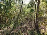 Lot 5 Tiger Lake Boulevard - Photo 2
