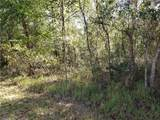 Lot 5 Tiger Lake Boulevard - Photo 3