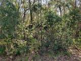 Lot 5 Tiger Lake Boulevard - Photo 4
