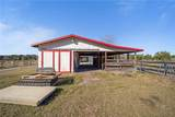 15271 Highway 475 - Photo 12
