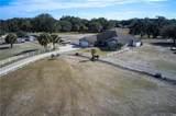 9498 Wachula Drive - Photo 10