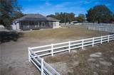 9498 Wachula Drive - Photo 23