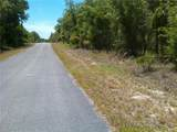 TBD Pony Ridge Drive - Photo 1