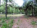 2518 W Plumtree Ln - Photo 1