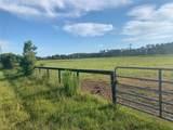 0 County Road 337 - Photo 5