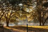 1507 Lake Marian Road - Photo 12