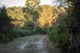 1507 Lake Marian Road - Photo 15