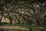 1507 Lake Marian Road - Photo 17
