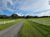TBD 73RD Path - Photo 10