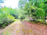 5642 Oakridge Drive - Photo 38