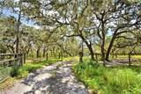 4015 Paw Paw Trail - Photo 40