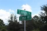 Lemon Drive - Photo 5