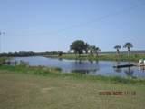 1104 Tropicana Drive - Photo 7