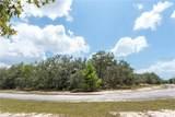 Deer Road - Photo 9