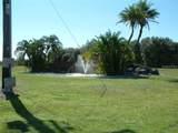909 Portulaca Drive - Photo 6