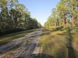 421 Portulaca Drive - Photo 3