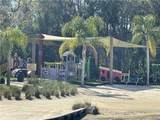 17933 Cachet Isle Drive - Photo 44
