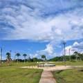0 Bougainvillea - Photo 10