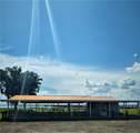 0 Bougainvillea - Photo 13