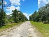 803 Hibiscus Drive - Photo 3